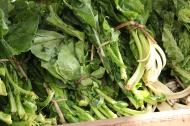 Spinat und Grünkohl